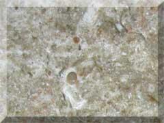 Jerusalem Grey Honed LSA